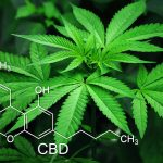 image-of-marijuana-leaf-and-cbd-chemical-formul